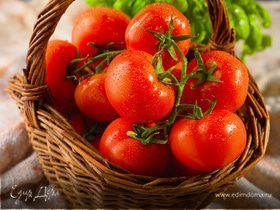 Томатина (Битва томатов в Испании)