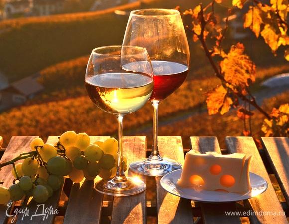 Праздник вина «Новое божоле» во Франции