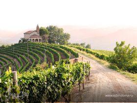 Праздник виноградарей в Болгарии