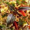 Tripolini с мясным соусом