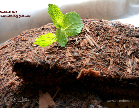 Чрезвычайно шоколадный тарт:)