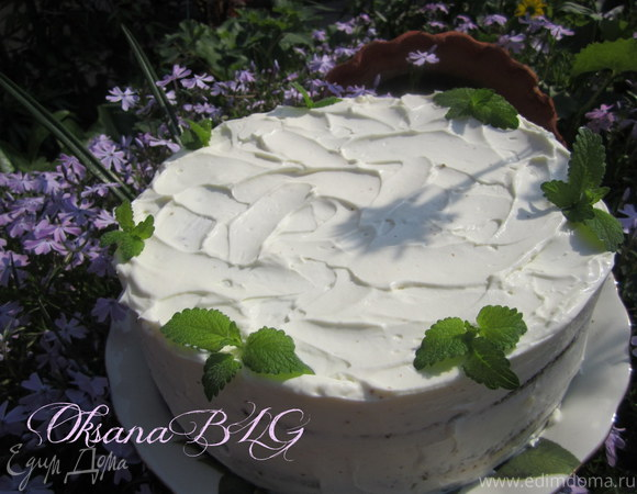 """Торт """"Медово-творожный"""""""