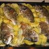 Дорада, запеченная с картофелем, под имбирем и прованскими травами