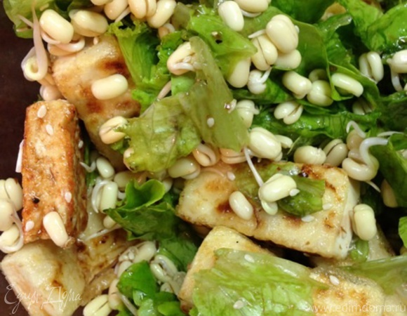 Салат с ростками маша и жареным тофу