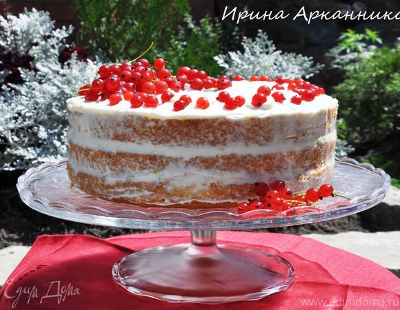 Голый торт с красной смородиной