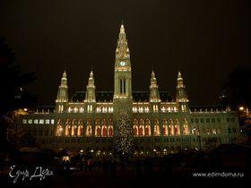 Путешествие в новогоднюю Вену... (часть первая)