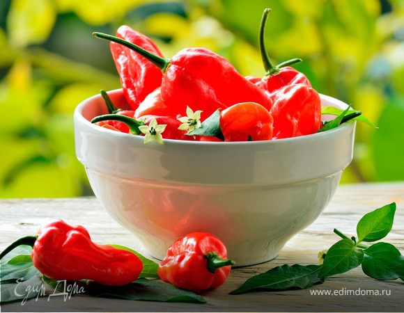 Пламя в тарелке: пять рецептов острых блюд