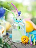 Напитки для пикника: пять весенних рецептов