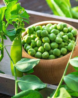 Отряд здоровья: чем полезны витамины группы B