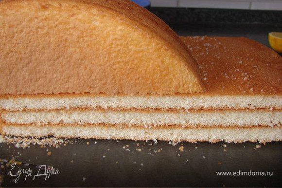 Бисквит порезать на кусочки. В кофе добавить алкоголь, пропитать бисквит (бисквиту нужно чуть коснуться кофе, иначе будет мокрым). Выложить бисквит одним слоем на дно формы (я брала прямоугольный пластиковый контейнер).