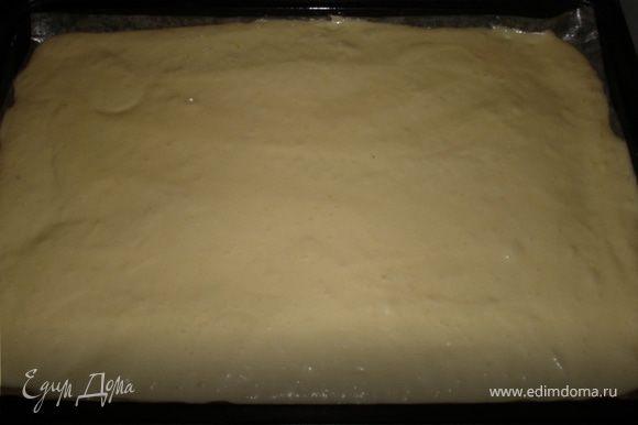 Просеять сверху муку и тщательно, аккуратно перемешать, в заключение медленно влить растопленное сливочное масло и вымешать тесто. Бисквитную массу вылить на противень.