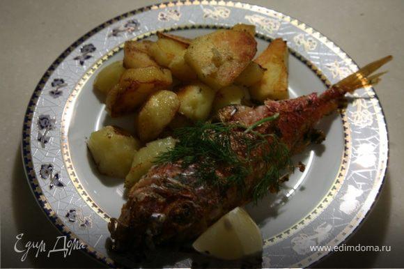 Обжарить рыбу с двух сторон по 7-8 мин с каждой стороны.Выкладывая рыбу на разогретую сковороду,прижать рыбу лопаткой,чтобы она не расскрылась.Тоже самое сделать,когда будете переварачивать рыбу на другую сторону.Готовую барабульку сбрызгнуть соком лимона,подавать сразу.Приятного аппетита.