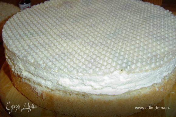 Теперь собираем торт. Первый бисквитный корж смазываем кремом, на него выкладываем вафельные коржи с суфле.Сверху накрываем вторым бисквитным коржом и смазываем его и бока кремом.