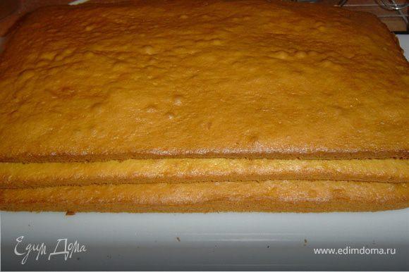 Противень смазываем маслом, тесто делим на три части и поочередно, выкладывая на противень, печем три коржа при температуре 180 гр 15 минут.