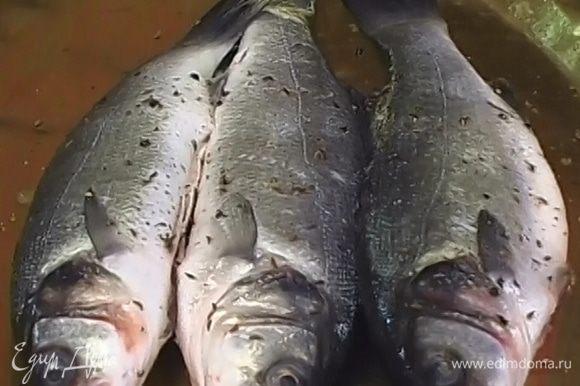Соль, тмин и перец растереть, этой смесью натереть рыбу изнутри и снаружи.