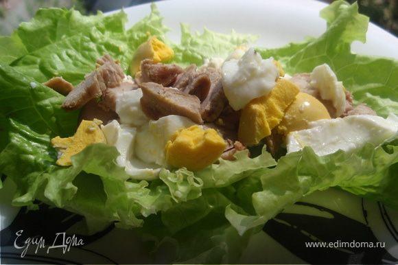 Выложим мясо и яйцо на листочки.