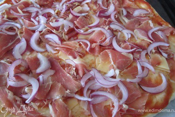 Утром тесто разровнять, придать ему круглую форму. Тесто немного смазать кетчупом, выложить кусочки сыра, порезанное мясо, лук порезанный полукольцами.