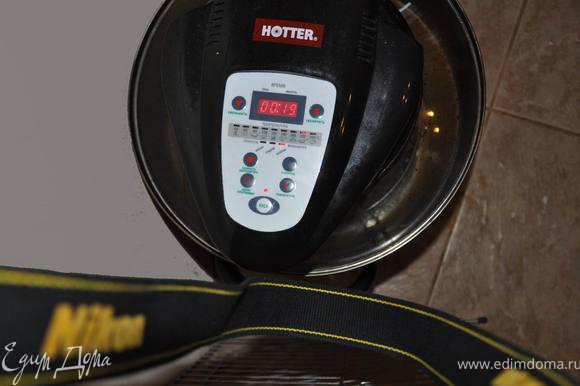 поставить в аэрогриль разогретый средняя решетка расширительное кольцо одето температура - 235 гр. скорость вентилятора - высокая время - 20 минут