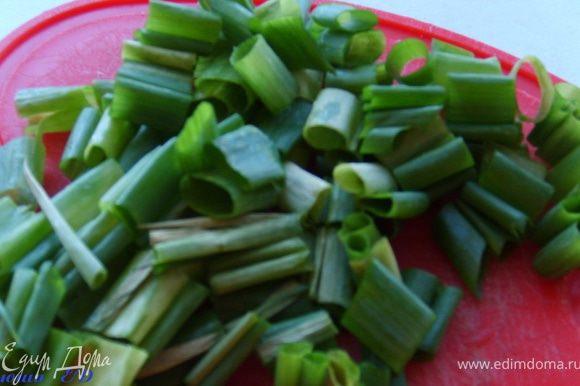 Зеленый лук нарезать крупно