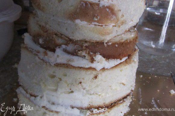 Поставить верхнюю часть торта. На верхней части спереди немного обрезать бисквит, для формирования мордочки панды.