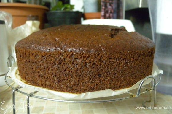 """У меня был верх от бисквита """"шоколад на кипятке"""" http://www.edimdoma.ru/recipes/17392 Верх я срезала, потому что для торта мне нужен был ровный верх а не """"грибочек"""". Вот так пришлось верхушку пустить в ход. Можно любой бисквит или кекс. Если для деток - обычный бисквит без шоколада."""