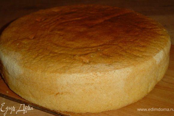 Масло с сахаром и солью взбить, по одному вбивать яйца, не переставая взбивать. Муку перемешать с крахмалом и разрыхлителем, просеять и добавлять поочерёдно с молоком с к яично-масляной массе. Форму (у меня 28 см в диаметре) застелить бумагой и смазать маслом, вылить тесто и выпекать при температуре 180 гр. 30 минут. Бисквит получается нежный и мягкий, пропитки не требует.