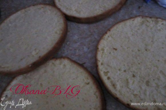 Приготовить бисквит по рецепту http://www.edimdoma.ru/recipes/20733 в двух формах (д. 24 см). Бисквит охладить, каждый разрезать на два коржа.