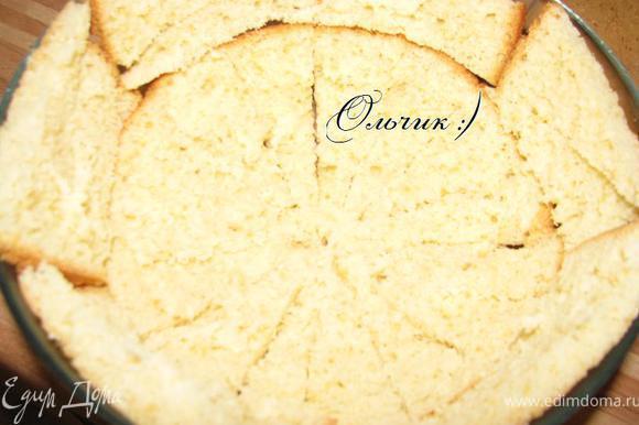 Приготовить бисквит по рецепту Евы: http://www.edimdoma.ru/recipes/31180 Остудить. Разрезать на сегменты. Я разрезала весь бисквит на 4 части и потом каждую часть - еще на 4 сегмента, каждый из которых разрезала вдоль, чтобы получились тоненькие кусочки. Уложила кусочки бисквита в посудину округлой формы близко друг к другу. (Рекомендуют выстелить блюдо пищевой пленкой, а затем уже выкладывать бисквит, чтобы облегчить извлечение торта из посудины, я торопилась и проигнорировала этот совет, благо тортик хорошо схватился и выскочил без проблем)))