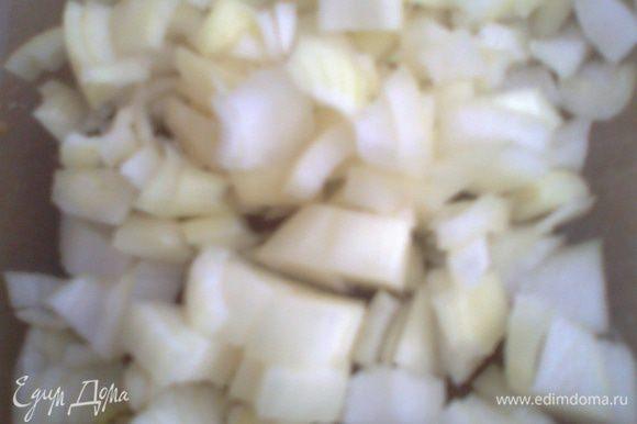 Луковицу и половину головки чеснока нарезаем.