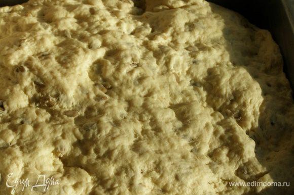 Поднявшийся хлеб вымесим, выложим в форму, смазанную маслом и дадим еще подняться на 2/3