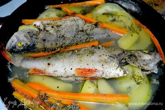У окушков чешую не чистят...она очень крепкая,да и уха наваристая если про бульоны...удаляем внутренности и жабры,промываем и готовим... В готовом виде чешуйка прям пластом отделяется..... Отвариваю окушков,кабачок,морковка,укроп,чуть соли.