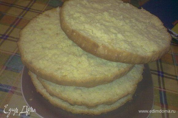 Разрезаем бисквит на коржи.
