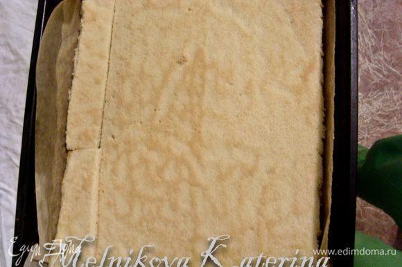 Бисквит разрезать пополам. Выложить одну часть бисквита в форму, выстеленную бумагой (где будет формироваться пирожное, это может быть и круглая разъемная форма, либо рамка для выпечки).