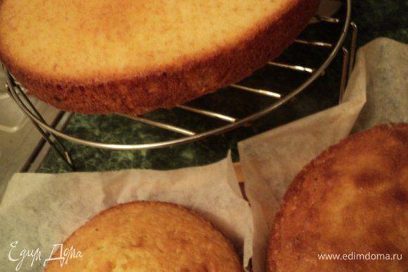 Добавить муку, смешанную с разрыхлителем теста, перемешать. Разложить тесто по формам и выпекать при температуре 190 градусов 20-25 мин до сухой палочки. Готовые бисквиты вынуть из форм и охладить на решетке.