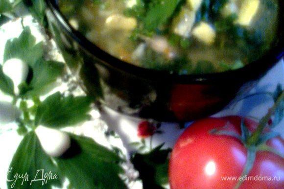 К супчику вкусно будет подать хлеб с зелёным творогом(http://www.edimdoma.ru/retsepty/41610-zelyonyy-tvorog)