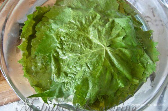 Если Вы используете свежие виноградные листья, то их промыть и залить крутым кипятком на 10 минут. Если консервированные, то они готовы к употреблению. Рис промыть, залить кипятком на 15 минут.