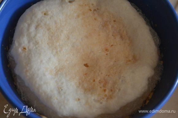 В теплое молоко добавить дрожжи и сахар и оставить на 10-15 минут - они должны вспениться.