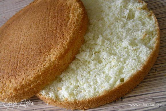 Бисквит приготовить по рецепту http://www.edimdoma.ru/retsepty/40614-idealnyy-biskvit и разрезать на 2 коржа.