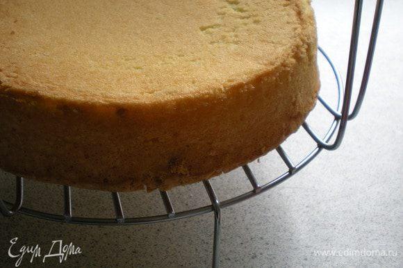 Выпечь кефирный бисквит. Для этого соединить все ингредиенты, взбить и выпекать при темп. 170* - 30 минут.