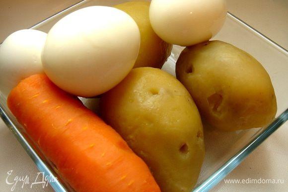 Картофель,морковь и яйца отварить, остудить и очистить.