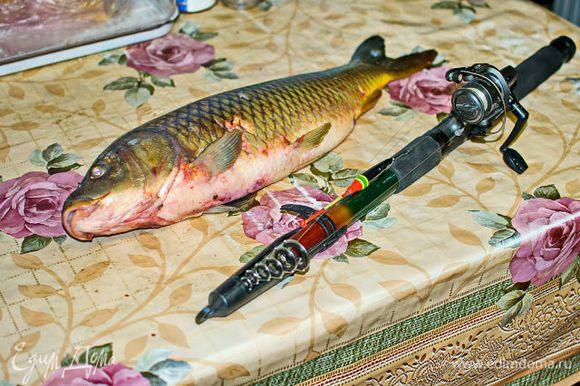 рыбу чистим, моем, если есть икра - отделяем, режем на кусочки