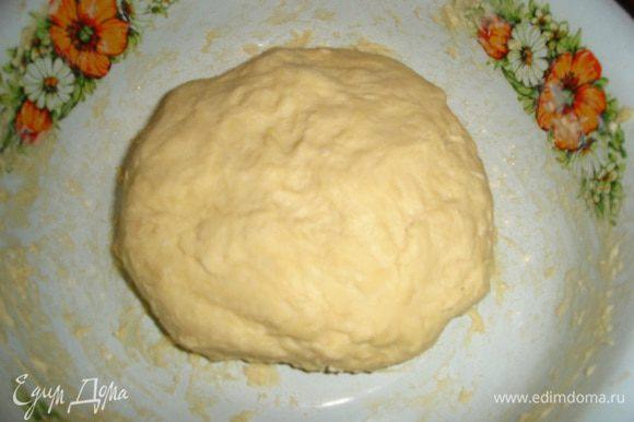 Вымешиваем тесто и постепенно добавляем молоко, все сразу не добавляйте. Все молоко может и не понадобится. У меня идет 1 ст. молока на дрожжи и 0,5 ст. на вымешивание. Тесто немного липнет к рукам. Накрываем и убираем в теплое место на 2 часа.