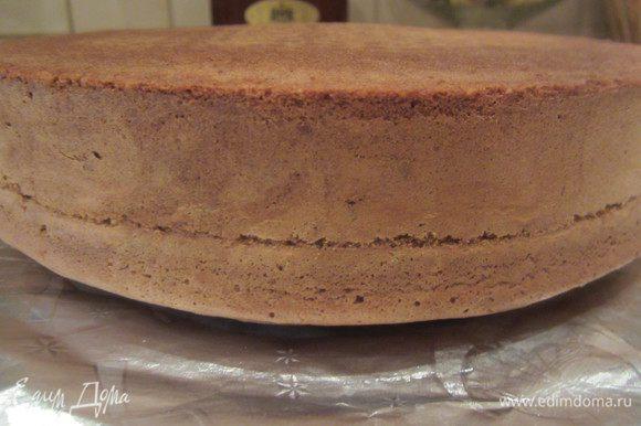 Когда бисквит остудился, освободить его из формы и порезать на две ровных части.