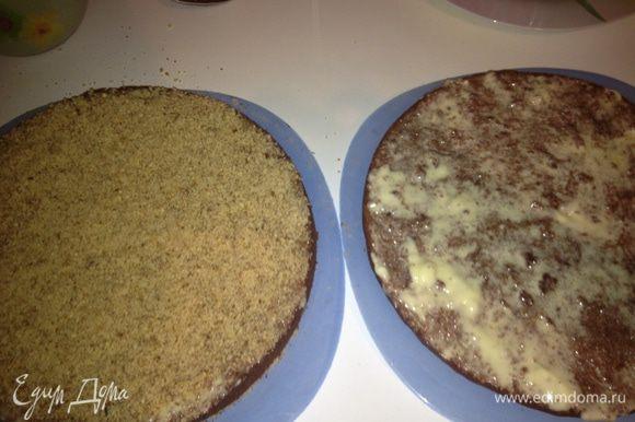 """Оба коржа равномерно смазать кремом, нижний посыпать орехами. Верхний корж вернуть """"на место"""". Посыпать сахарной пудрой и орехами."""