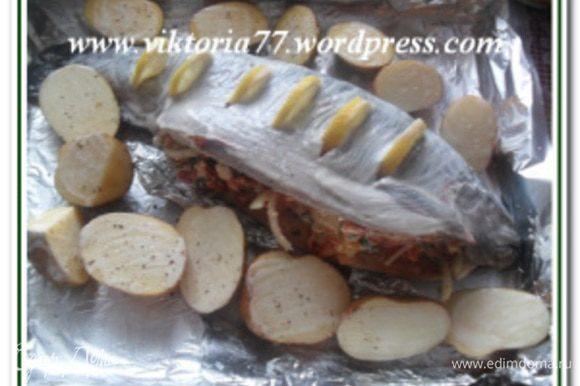 Картофель помыть, обсушить, разрезать пополам и выложить вокруг рыбы. Смазать картофель растительным маслом, посолить, поперчить.