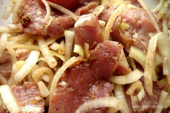 Мясо очистить от плёнок и нарезать на медальоны, толщиной в 1,5-2 см. Лук нарезать полукольцами. Чеснок растолочь в ступке и смешать с остальными специями,кроме соли, и уксусом. Если аджика,которую вы используете, недостаточно острая, то можно добавить чёрного перца. В глубокой миске мясо с луком сдобрить ароматной смесью и хорошо перемешать. Оставить при комнатной температуре на 0,5-2 часа (в зависимости от того, каким временем вы располагаете).