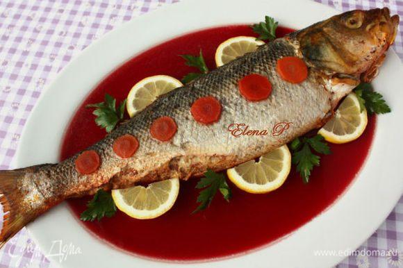 """Слегка остудить рыбу и выложить на блюдо, присоединив голову к """"туловищу"""". Если зашивали разрез, удалите кухонную нить. Бульон процедить, посолить. Если он недостаточно клейкий, добавить в него желатин. Бульон влить в блюдо с рыбой. Остальной - в широкую плоскую ёмкость, поставить в холодильник до застывания желе."""