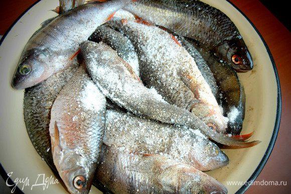 Рыбу обсушить и пересыпать крупной солью.