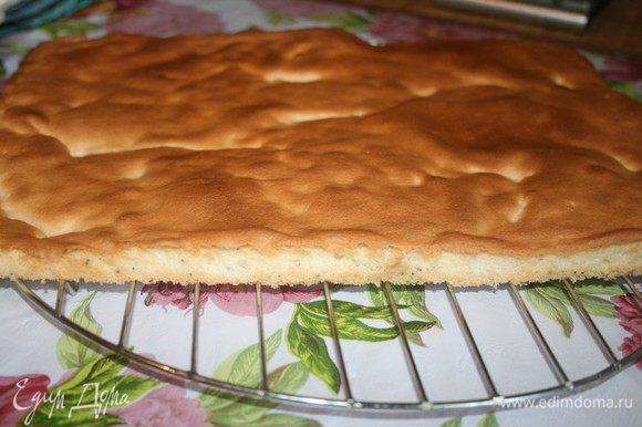 Испечь бисквит по этому рецепту http://www.edimdoma.ru/retsepty/31180-biskvit-sekret-prigotovleniya-pechenie-savoyardi,только в конце по желаняю добавить мак)Выполняя все рекомендации,получится замечательнейший бисквит.