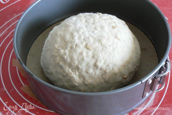 Выброженное тесто сформировать,уложить в форму на расстойку 1.5-2,5 часа